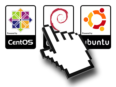A Selection of Operating Systems